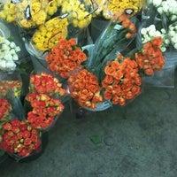 Photo taken at Berkeley Florist Supply by Lydia H. on 9/6/2012