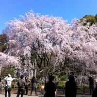 Снимок сделан в Rikugien Gardens пользователем lyo 4/7/2012