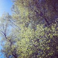Photo taken at Garten @Ullstein Buchverlage GmbH by Marlene S. on 4/27/2012
