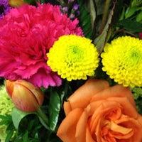 Photo taken at Plaza Florist & Gifts by Melissa K. on 6/17/2012