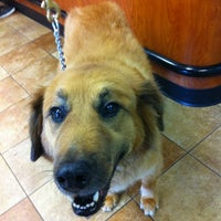Photo taken at Banfield Pet Hospital by Daniel M. on 7/24/2012
