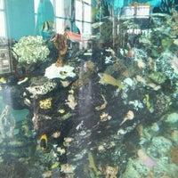 Photo taken at South Carolina Aquarium by Sarah on 5/27/2012