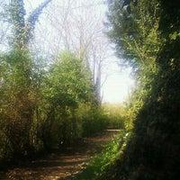 Photo taken at Boschetto Dei Partigiani by Umberto F. on 4/1/2012