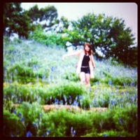 Photo taken at 薰衣草森林 Lavender Cottage by Viki L. on 4/13/2012