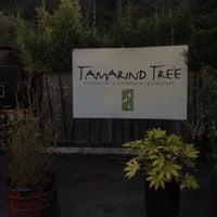 Foto scattata a Tamarind Tree da Sabrinabot il 8/18/2012