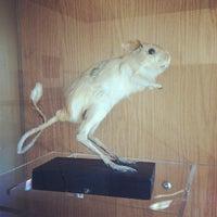 Снимок сделан в Музей гигиены пользователем Rustam M. 5/31/2012