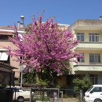 4/28/2012 tarihinde Yawuz T.ziyaretçi tarafından Kiper Pastanesi'de çekilen fotoğraf