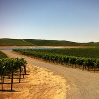 Photo taken at Two Rock Vineyard by Colleen D. on 8/13/2012