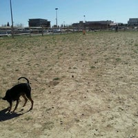 Photo taken at front range village dog park by Melissa M. on 3/20/2012