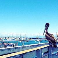 Photo taken at Old Fisherman's Wharf by Lenka V. on 6/24/2012