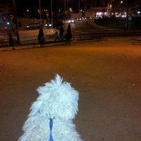 Photo taken at Parque Garrido by Javier S. on 3/17/2012