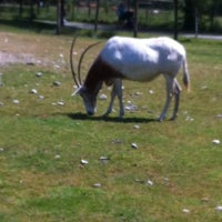 Photo taken at Greater Vancouver Zoo by Timothy E. on 5/19/2012