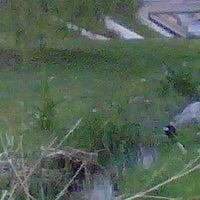 Photo taken at De Boer Park by Ian D. on 5/8/2012