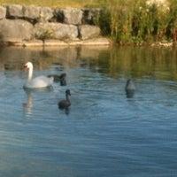 Photo taken at Port de St-Blaise by Cynthia on 8/7/2012