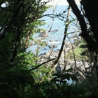 Photo taken at Patrick's Point State Park by Jeremy L. on 6/23/2012