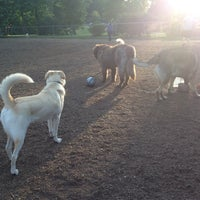 Photo taken at Talley Day Bark Park by Peter T. on 6/8/2012