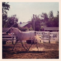 Photo taken at Baiting Hollow Farm Vineyard by francesca s. on 9/1/2012