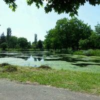 Photo taken at City Park by Maja K. on 5/20/2012