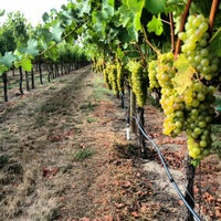 Photo taken at Saralee Vineyards by William A. on 9/8/2012