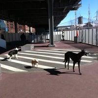 Photo taken at East River Esplanade South Dog Run by Keisha R. on 2/26/2012