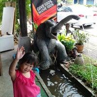 Photo taken at Doi Chang Coffee by Winai N. on 3/4/2012