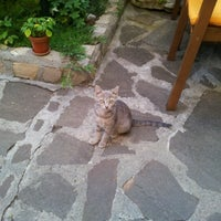 Das Foto wurde bei Restaurant Izbata von Atanas 🐬 am 8/2/2012 aufgenommen