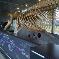 Photo taken at Beaty Biodiversity Museum by Hiroki T. on 2/19/2012