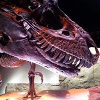 Foto tirada no(a) Houston Museum of Natural Science por Jimmy D. em 7/23/2012