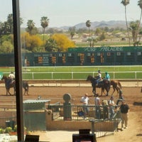 Photo taken at Turf Paradise by Henry D. on 3/30/2012