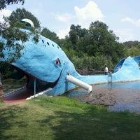7/11/2012 tarihinde Curtis T.ziyaretçi tarafından Blue Whale'de çekilen fotoğraf