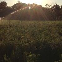 Photo taken at QVF Farm by John B. on 7/25/2012