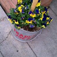 Photo taken at Trader Joe's by Bren B. on 4/14/2012