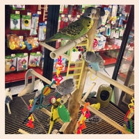 Photo taken at Petco by Turhan on 6/22/2012