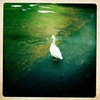 Photo taken at Parque Metropolitano by Leonardo on 2/12/2012