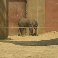 Photo taken at Toledo Zoo by Vicky T. on 4/2/2012