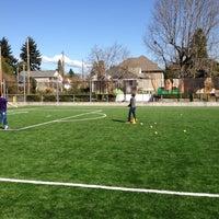 adidas soccer field