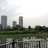 Foto scattata a 不忍池弁天堂 da Gentaro S. il 6/2/2012