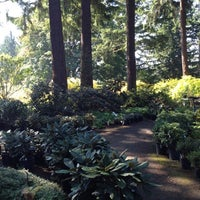 ... Photo Taken At Weyerhaeuser Rhododendron And Bonsai Gardens By Susan P.  On 9/13 ...
