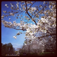 Photo taken at Duke University School of Law by Kaoru T. on 3/16/2012