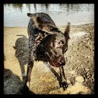 Photo taken at Five Mile Lake Park by Shelli M. on 6/28/2012