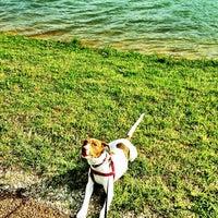Photo taken at Lamar Park-Lake Patsy by Rob C. on 3/20/2012