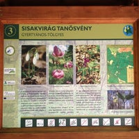 Photo taken at Sisakvirág Tanösvény - Gyertyános-Tölgyes by Márton V. on 7/31/2012