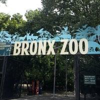 Photo prise au Bronx Zoo par Ines T. le8/21/2012