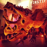 Foto tirada no(a) Natural History Museum of Los Angeles County por Edward S. em 3/3/2012
