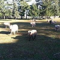 Photo taken at Ash Mill Farm Bed & Breakfast by Liz C. on 3/3/2012