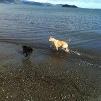 Photo taken at Petone Beach by wendy L. on 4/15/2012