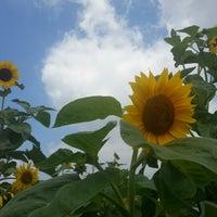 รูปภาพถ่ายที่ 麻溝車庫 バス停 โดย Takahiko N. เมื่อ 8/7/2012