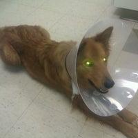 Photo taken at Veterinary Emergency Hospital by Gabi B. on 6/9/2012