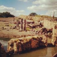 Das Foto wurde bei ZOOM Erlebniswelt von jan am 8/10/2012 aufgenommen