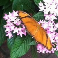 Photo taken at Olbrich Botanical Gardens by Jordan L. on 8/8/2012